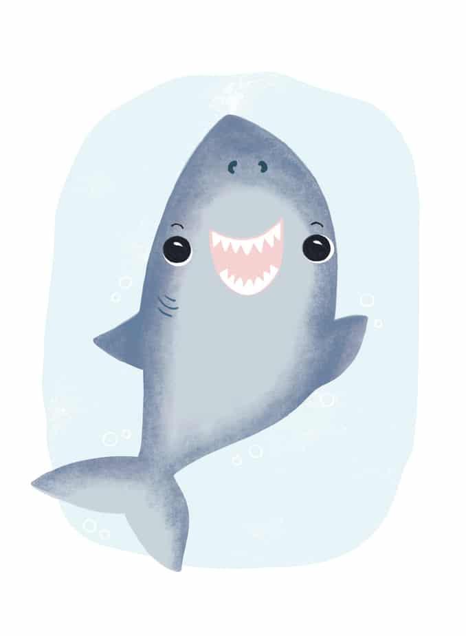Little-Shark